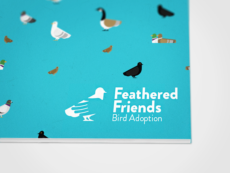 Feathered Friends Bird Adoption Brand Identity: Logo, Style Guide, and Stationery
