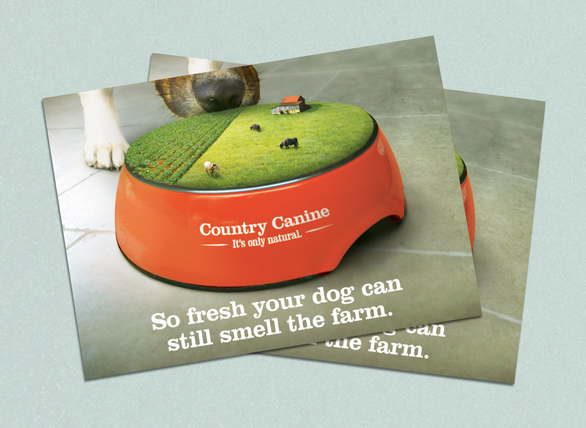 Country Canine Direct Mail Advertisement